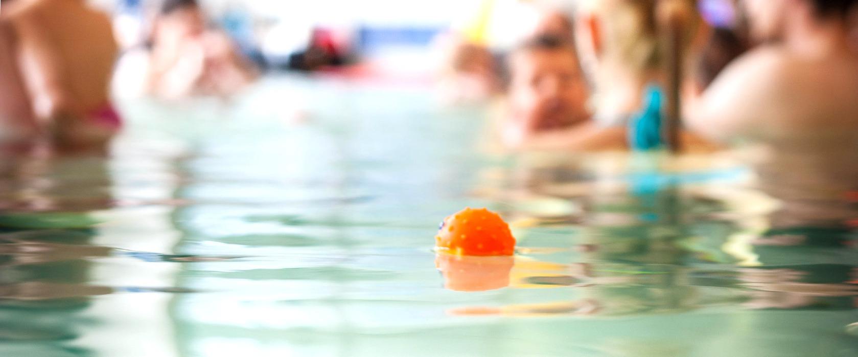 Firmengeschichte Schwimmschule Wassermäuse