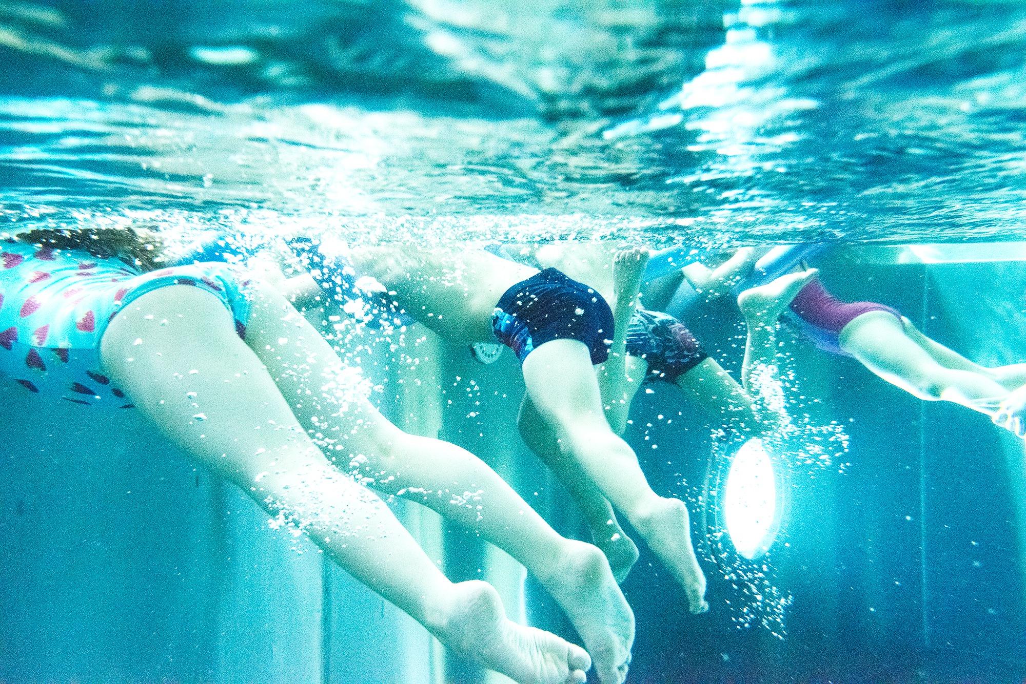 Leibild Schwimmschule Wassermäuse
